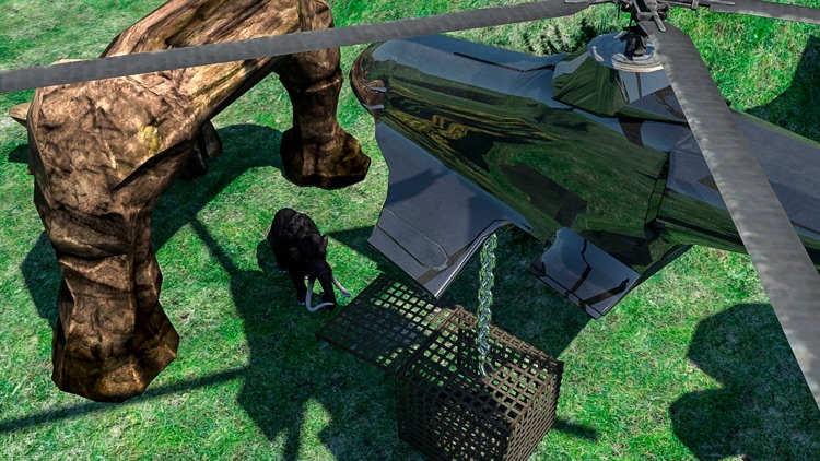 Animals Fire Escape in Jungle screenshot-3