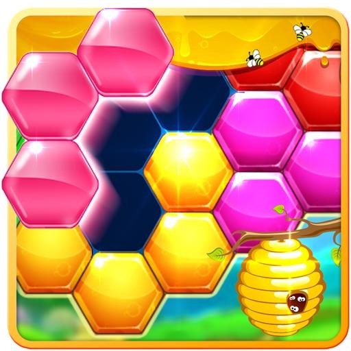 Block Hexa Puzzle 2018