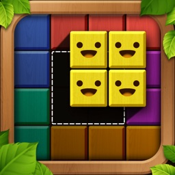 Wooden Block Puzzle: Wood Game
