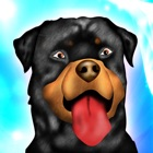 Dog Agility Obstacles Dressage Race Contest - Free Edition icon