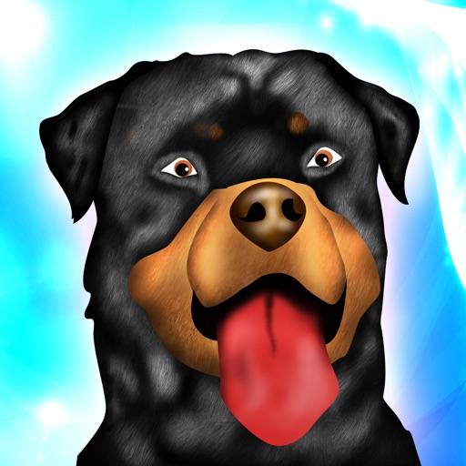 ловкость собаки препятствия выездке конкурс гонки - бесплатная версия