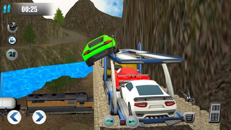 Car Transport-er Truck Driver