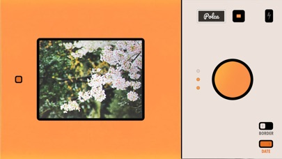 Polca Screenshots