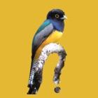 Belize Birds Field Guide icon