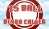 75 Ball Bingo Caller