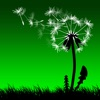 Leaf on the Wind (AppStore Link)
