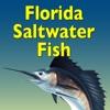 Florida Saltwater Fish
