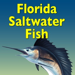 Florida Saltwater Fish