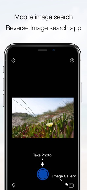 1. CamFind (Android, iOS)