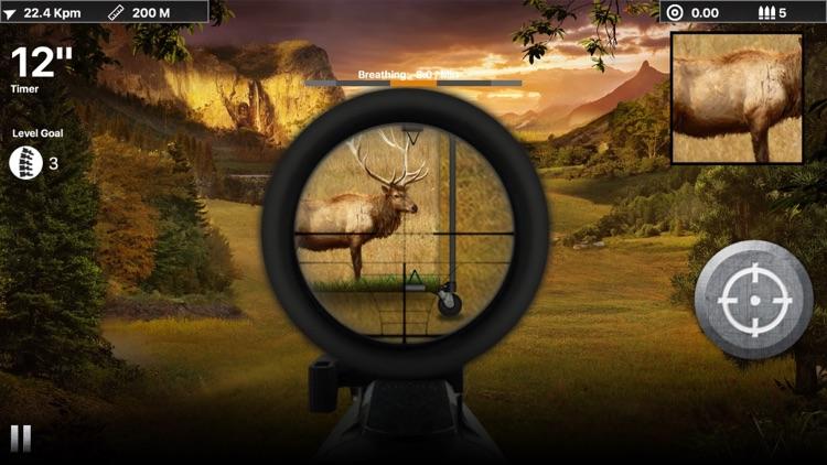 Deer Target Shooting : Pro