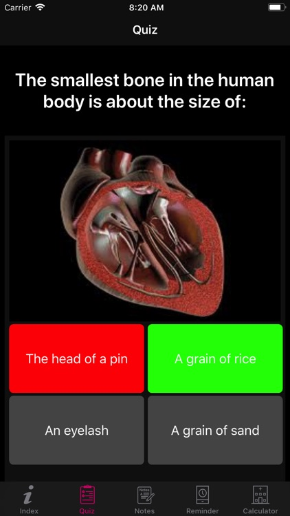 Human Heart Anatomy screenshot-6