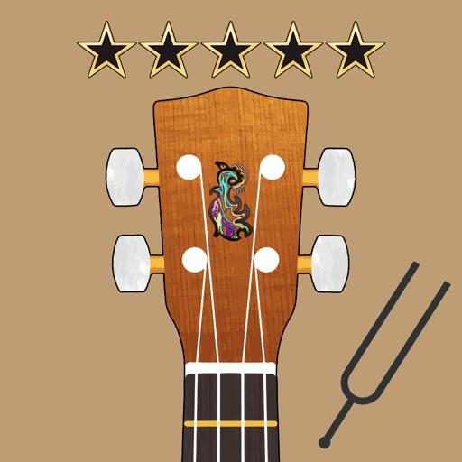 Play The Ukulele