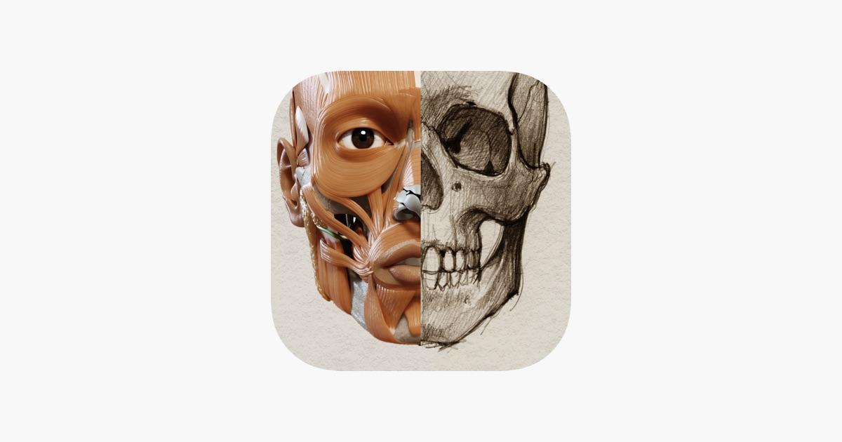 Anatomía 3D para el artista | v. 1.2 en App Store