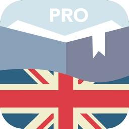 Английская практика PRO