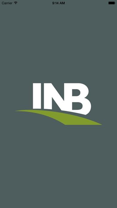 INB Cash Management Mobile Screenshot