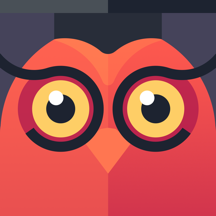 Owl - Daily Tests