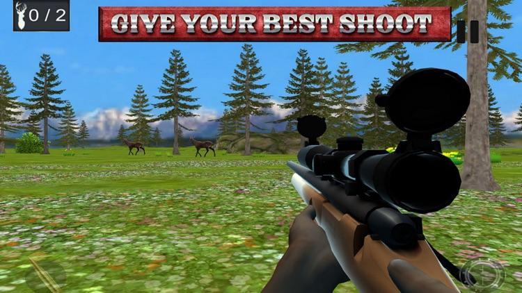Best Shooter Deer:Hunting For