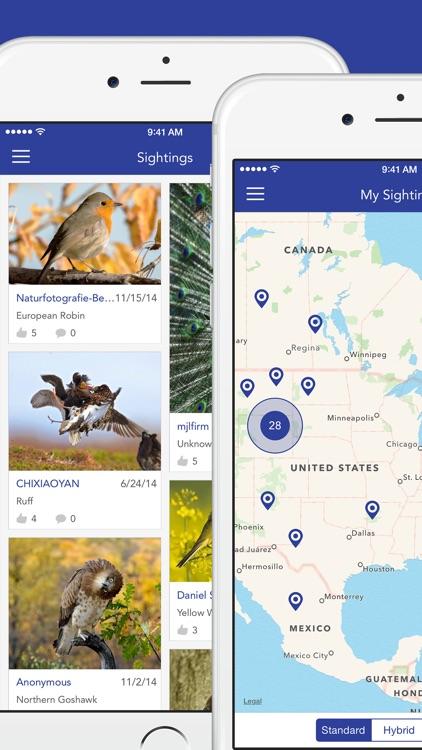 iKnow Birds LITE - USA screenshot-4
