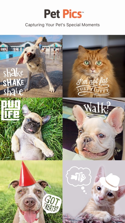 Pet Pics - Pet Photo Editor