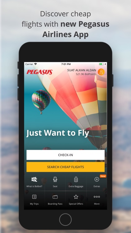 Cheap Flight Tickets | Pegasus screenshot-0