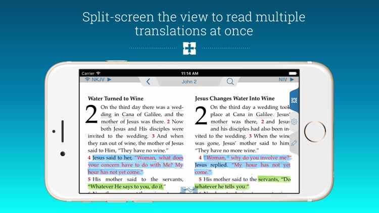 NIV Study Bible screenshot-3