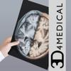 Radiology - Head - 3D4Medical.com, LLC
