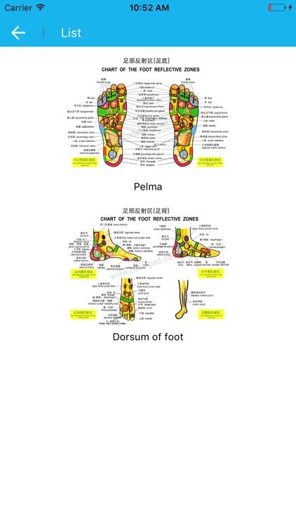 Foot Reflective Zones Handbook screenshot-4