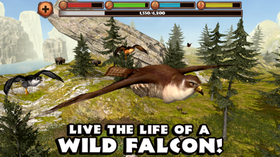 Screenshot for Falcon Simulator in Singapore App Store
