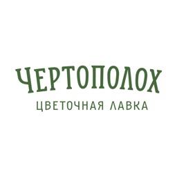 Чертополох | Обнинск