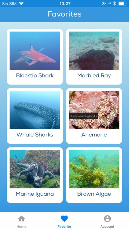 Galapagos Sea Life screenshot-3