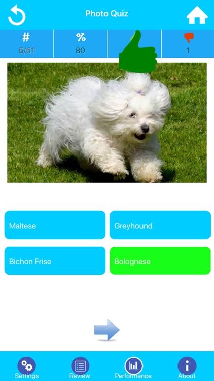 Dog Breeds Guide & Quiz screenshot-3