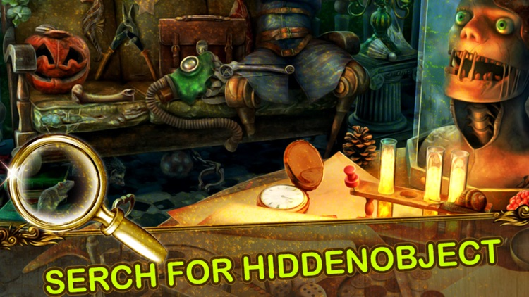 Vintage Mystery Hidden Objects