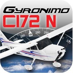 C172N Performance Pad