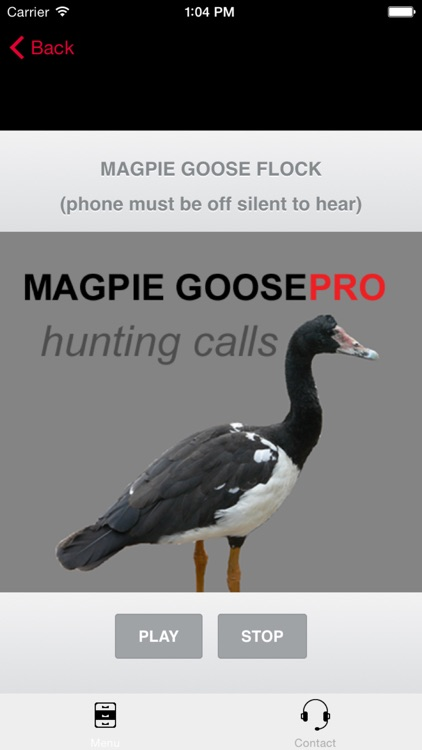 REAL Magpie Goose Calls - Hunting Calls for Magpie Geese - BLUETOOTH COMPATIBLE screenshot-0