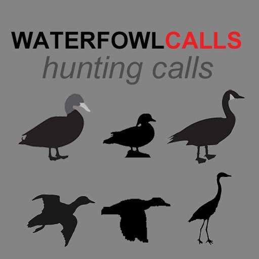Waterfowl Hunting Calls SAMPLER - The Ultimate Waterfowl Hunting Calls App For Ducks, Geese & Sandhill Cranes