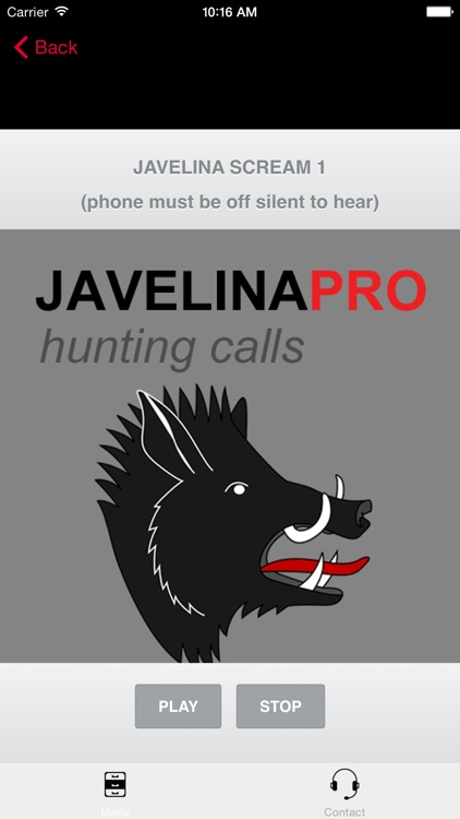 REAL Javelina Calls & Javelina Sounds to use as Hunting Calls screenshot-0