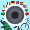 Dicionário Visual JOURIST