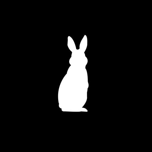 Bunny rabbit dating