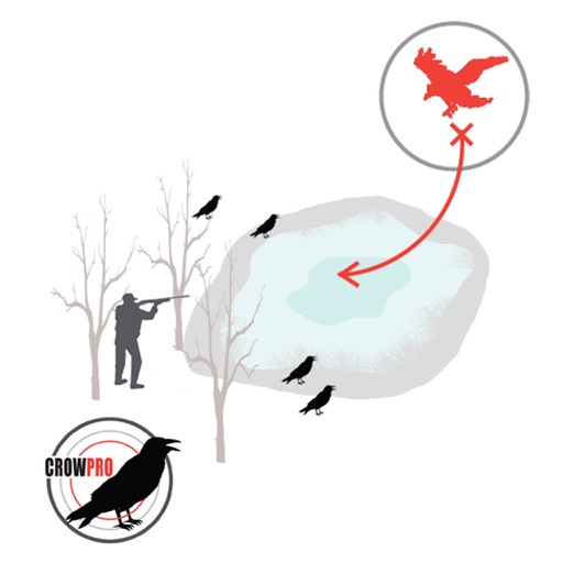 Crow Hunt Planner for Crow Hunting - CROWPRO