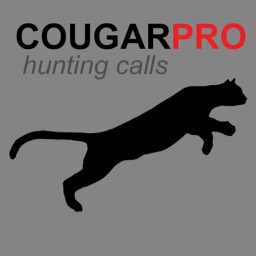 REAL Cougar Hunting Calls - 9 REAL Cougar CALLS and Cougar Sounds!