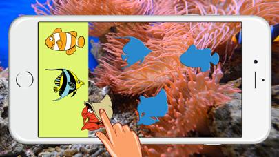 Big Fish Aquarium Animals Jigsaw Drag And Drop Puzzle Match