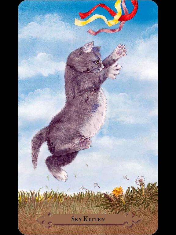 Mystical Cats Tarot-ipad-1