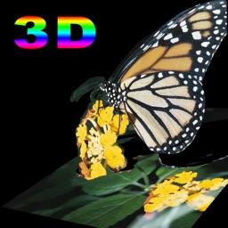 3D PhotoCut.