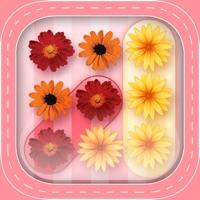 Codes for Burst Flower Bubble Pop: Garden Match Board Hack