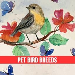 Pet Bird & Breeds - Foreign Birds