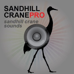 Sandhill Crane Hunting Calls - With Bluetooth Ad Free