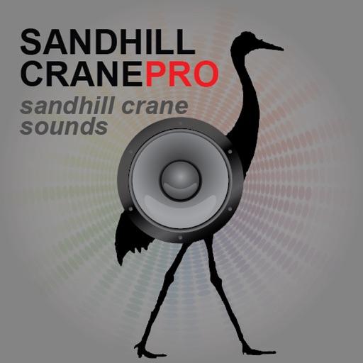 Sandhill Crane Hunting Calls - With Bluetooth Ad Free