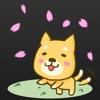 カンタ、、ごめんね。~ちょっと切ないわんこ育成アプリ~犬と私の感動の物語。アイコン