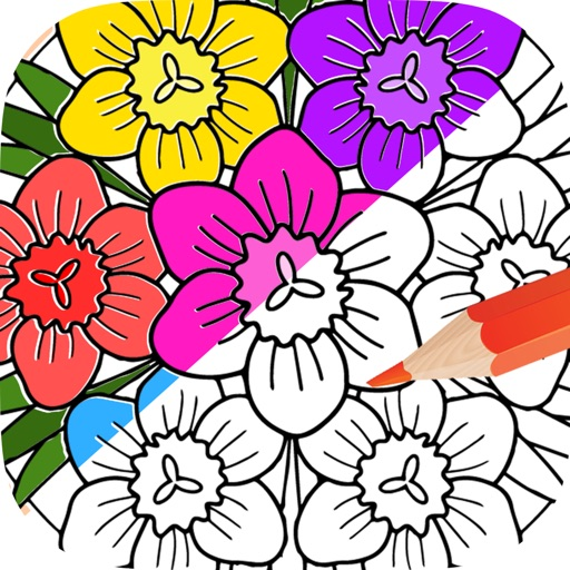 Coloring Book For Adults Free Mandalas Adult Coloring