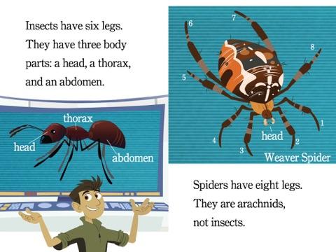 wild insects and spiders wild kratts by chris kratt martin kratt